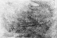 Fingerprint secured from latex glove